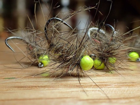 Hot head Caddis Jig