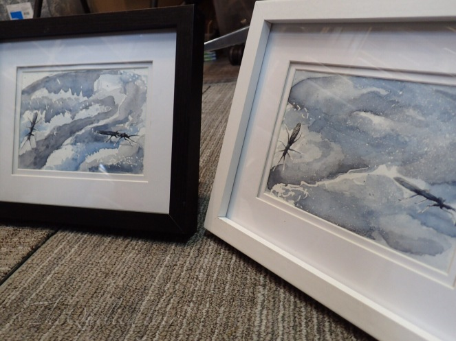 Winter Stonefly Watercolors Framed
