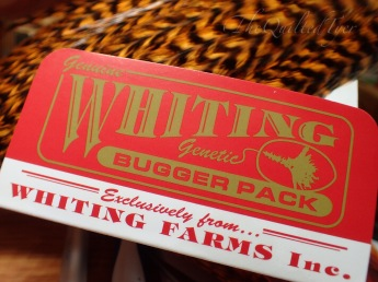 Whiting bugger packs are a good investment.