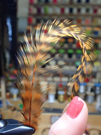 Hold the feather by the stem in one hand and pull the tip down with the other.