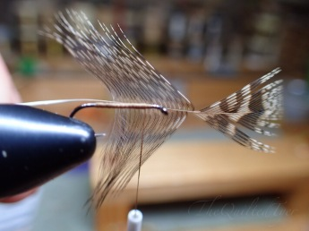 See the step by step on how to shorten longer fibers