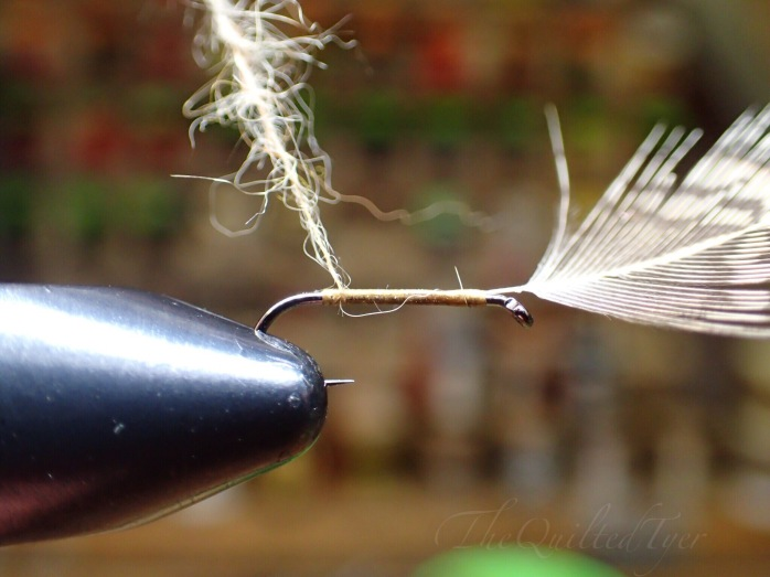 With the loop grasped in your fingers or hackle pliers begin to wrap it forward.