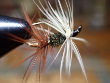 Renegade soft hackle