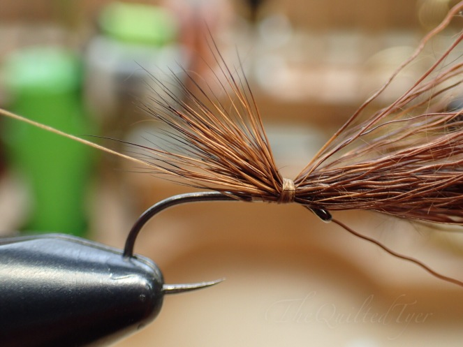 Now bring the thread up under the deer hair wing and to the backside of the fly.