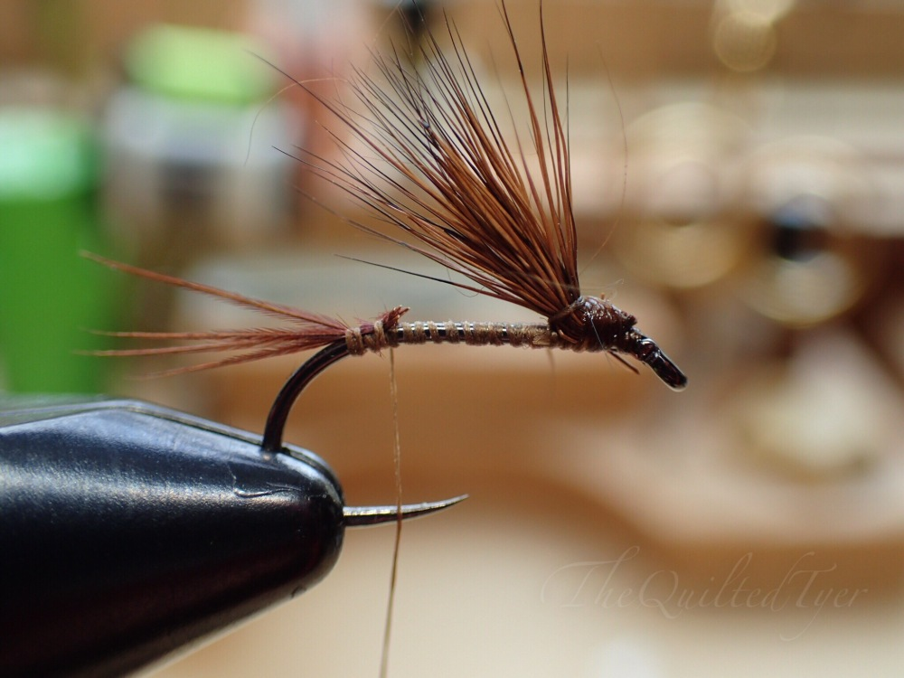 Attach a few pheasant tail fibers at the base of the shank for a tail.