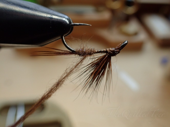 With your vise inverted, bring the dubbing noodle towards the bend then under the wing.