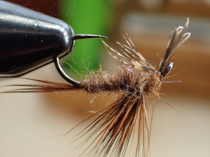 Tie the partridge fibers in underneath the fly, snip the excess and whip finish your fly.