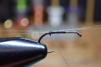 Begin your fly by securing and splaying your mayfly tails.