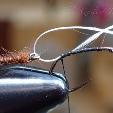 Bring the thread over the hook shank towards the eye.